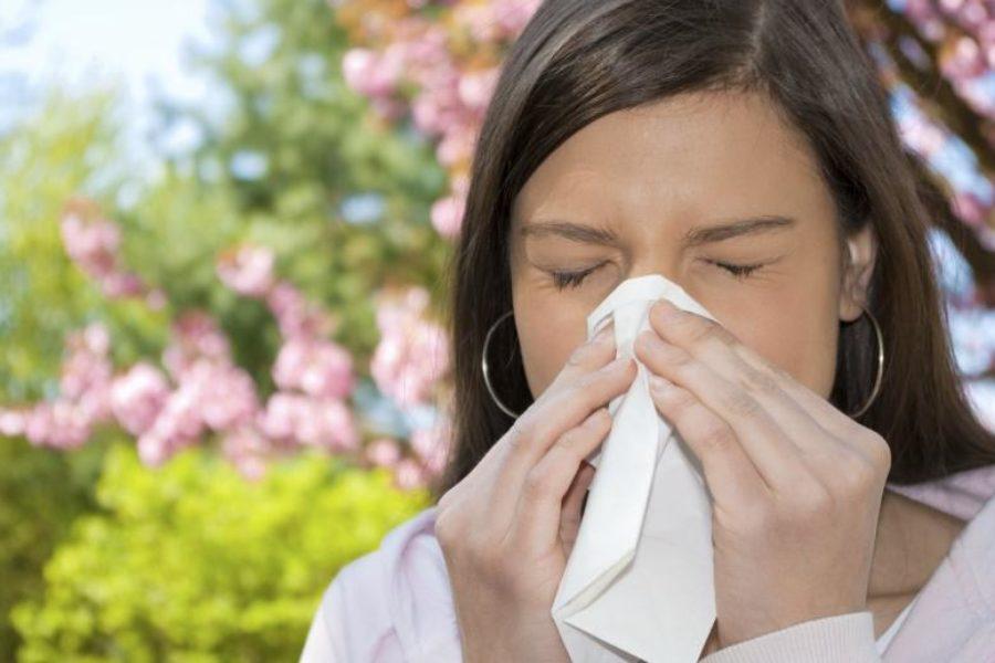 Les allergies printanières font leur retour!